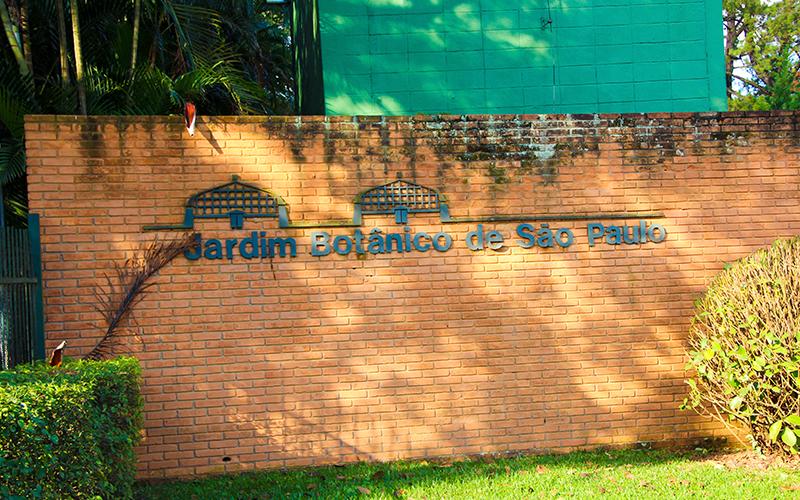Jardim-Botanico-de-São-Paulo