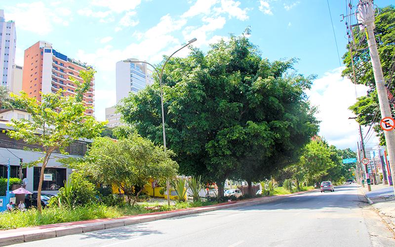 avenida-pacaembu---higienopolis